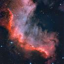 Nebulosa de Norteamerica (NGC 7000),                                Aniceto Porcel