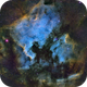 Starlight Enshrined ( NGC 7000 & Pelican Widefield ),                                Reza Hakimi