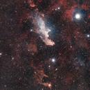 IC2118 - The Witch Head Nebula,                                Ryan