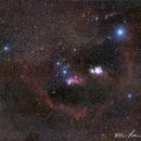 Orion(4panels),                                wei-hann-Lee
