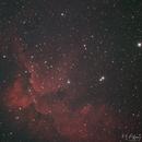 NGC 7380 -Wizard Nebula,                                astro7654