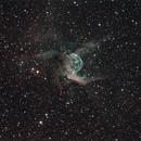 NGC 2359 Thors Helm - Thors Helmet Nebula,                                Michael Hoppe