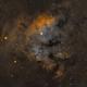 NGC7822 Flaming Skull,                                Daniel Hightower