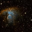 Pacman Nebula,                                Everett Lineberry