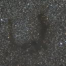 Barnard 143,                                Ray Heinle