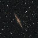 NGC 891 & Abell 347,                                Michael Hoppe