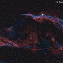 Western Veil Nebula,                                Awni Hafedh
