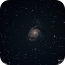 M101 #4 & #5 Combined,                                Molly Wakeling