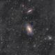 M81-M82 & IFN,                                Rodrigo