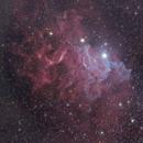 Flaming star nebula,                                Guillermo Gonzalez
