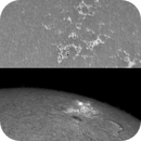 AR11476 in CaK and Ha,                                Brian Ritchie