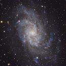 M33 Triangulum Galaxy,                                Michael Broyles