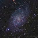 M33,                                Dave (Photon)