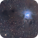 NGC 7023 Iris nebula,                                Dawn Lowry