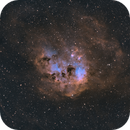 IC410 - The Tadpoles Nebula (HOO),                                jmarinotero