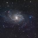 M33 La Galaxie du Triangle Triangulum Galaxy,                                Victor