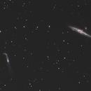 NGC 4631 and NGC 4656,                                Wolfgang Zimmermann