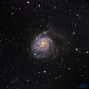 The Pinwheel Galaxy  M 101,                                Greg T.