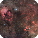 Northern Cygnus,                                Jeff Ball