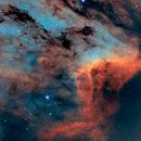 Pelican Nebula,                                Lancelot365