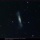 NGC3628 Leo,                                rmarcon