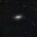 M63– The Sunflower Galaxy,                                Shannon Calvert