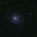 M101,                                Hamster1776