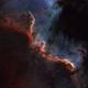 NGC 7000,                                Gary Imm