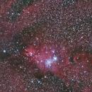 The Cone Nebula,                                Don Walters
