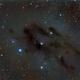B22 complesso nebulare oscuro Toro,                                Federico Bossi
