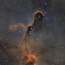 The Elephant's Trunk Nebula in Cepheus,                                Ola Skarpen SkyEyE