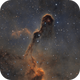 The Elephant's Trunk Nebula in Cepheus,                                Ola Skarpen SkyEyE