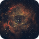 Rosettes NGC 2237,                                Thierry Beauvilain