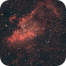 The Eagle Nebula,                                Astrogirl.Au
