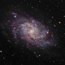 M33 - Triangulum Galaxy,                                Emanuele Bergamaschi