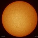 Sol - December 26,                                Damien Cannane