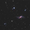 NGC660 LRGB,                                Christopher Gomez