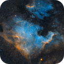 NGC 7000 North American Nebula,                                Oliver Quas