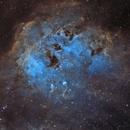 IC 410 - The Tadpole Nebula in SHO,                                Crazy Owl Photography
