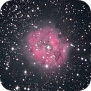 IC5146 Cocoon nebula, unguided.,                                Juan Pablo (Obser...