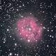 IC5146 Cocoon nebula, unguided.,                                Juan Pablo (Obser...
