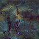 IC 1396,                                Nicola Davide Fur...