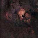 The North America Nebula an the Pelican Nebula,                                Dominique Callant