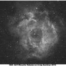 Rosette Nebula in Ha,                                Craig Gardiner