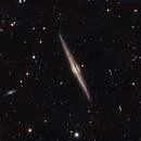 Needle Galaxy (Edge-on Spiral NGC 4565),                                Scott Denning