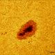 Sunspot 2148 (21 september 2015, 13:29),                                Star Hunter
