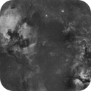Northern Cygnus, an Ha mosaic in progress,                                William Jordan