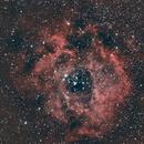 NGC 2237 : la rosette,                                Ferraro