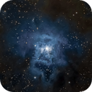 "NGC7023 - first light with Celestron EDGEHD 9.25"",                                Almos Balasi"