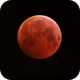 Moon eclipse,                                Vital